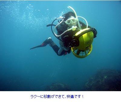 四国徳島県海陽町 ダイビングサ...